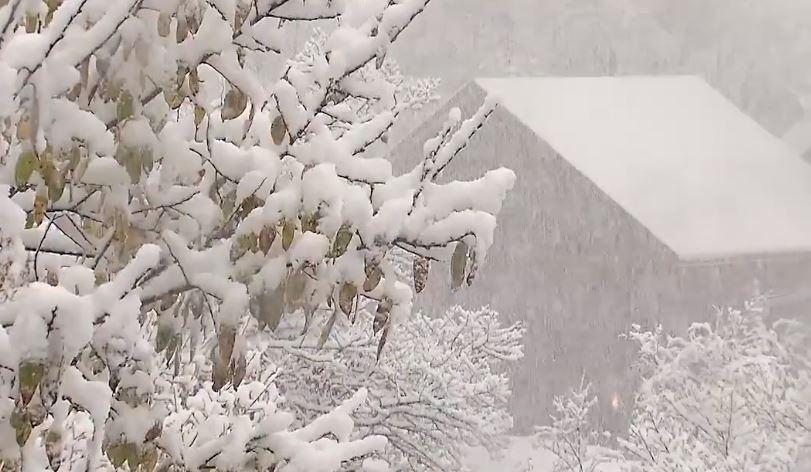 หิมะแรกที่ญี่ปุ่น