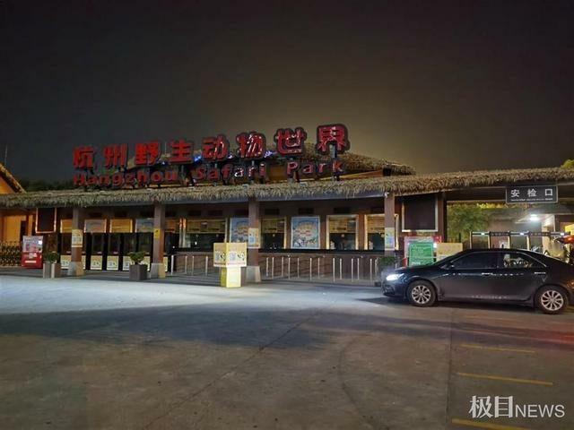 เสือดาวหลุดจากสวนสัตว์ ถึงสามตัวด้วยกันในประเทศจีน